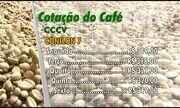 Confira a cotação de café no Espírito Santo