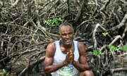 Mudanças climáticas alteram biomas de manguezais na Bahia