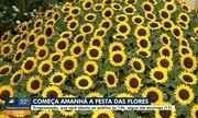 Festa das Flores começa nesta terça (12) em Joinville