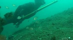 Globo Mar mergulha fundo e mostra pesca submarina