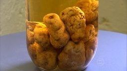 Adulto na Irlanda chegou a consumir mais de 6kg de batata por dia