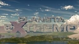 Chamada nova temporada Planeta extremo