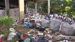 Região do Barreiro, em Belo Horizonte, tem mais de 200 confirmações de dengue