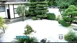 Pavilhão Japonês do Ibirapuera tem exposição de bonsai