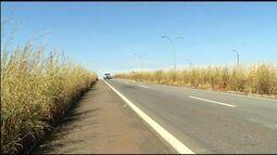 Motoristas enfretam dificuldade com o mato alto na BR-153, em Anápolis