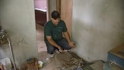 Donos de ranchos na região de Pereira Barreto estão com medo após onda de furtos