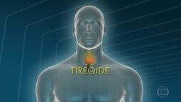 Médico explica detalhes sobre a tireóide
