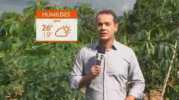 Confira a previsão do tempo para o distrito de Humildes, em Feira de Santana