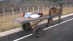 Cena de solidariedade humana pode ter evitado acidente de trânsito no Cariri Paraibano