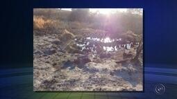 Empresa é multada em mais de R$ 770 mil por queimada em Óleo
