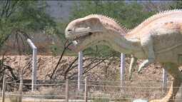 Nova espécie de dinossauro pode ter sido descoberta em Sousa, no Sertão da PB