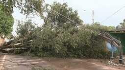 Chuva causa danos materiais em vários pontos de Boa Vista