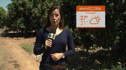 Confira a previsão do tempo para o distrito de Maniçoba, em Juazeiro