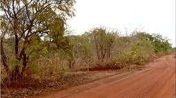 Polícia registra vários assassinatos durante final de semana no Tocantins