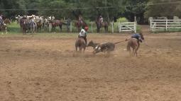 Veja o Mirante Rural deste domingo (16)