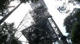 Parte 3: Torre de observação em reserva florestal atrai turistas a Manaus