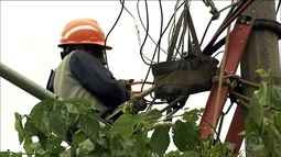 Rompimento dos cabos de rede elétrica prejudica os moradores de São Paulo