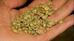 Preço do café de qualidade inferior dispara em Minas Gerais