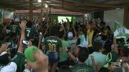Palmeirenses comemoram a conquista do Campeonato Brasileiro, em São Luís