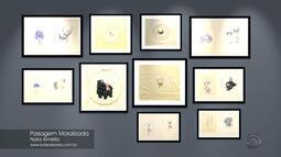 Arte: confira obras da mostra 'Paisagem Moralizada', de Nara Amelia