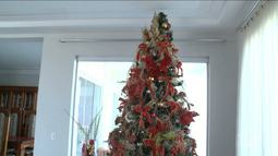 Encerra neste sábado inscrições para concurso Árvore Encantada do Brilha São Luís