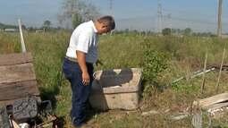 Cuidados com o mosquito transmissor da dengue devem ser reforçados em propriedades rurais