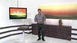 Confira o 1º bloco da retrospectiva do Inter TV Rural 2016