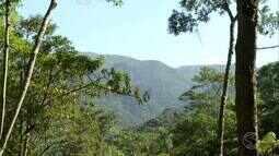 Revista reprisa programa sobre as belezas do Parque Nacional do Itatiaia - parte 2