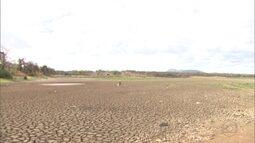 Municípios pernambucanos sofrem com os reservatórios secos devido à escassez das chuvas