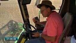 Produtores já começam o plantio da safrinha de milho