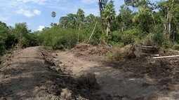 Construção ilegal de aterros gera problemas no Pantanal