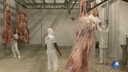 Agronegócio da Bahia faz a 1º exportação de carga de carne bovina para a China