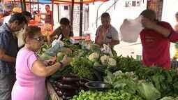 NE Rural faz um passeio pela feira do Bairro Álvaro Weyne e mostra os destaque das vendas