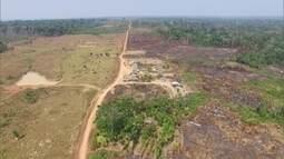 Desmatamento ilegal vira atividade lucrativa e organizada em Lábrea (AM)