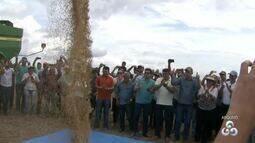 Embrapa promove reunião com produtores rurais de Roraima sobre lavoura de soja e pecuária