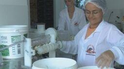 Setor da agroindústria em Cacoal recebe incentivo