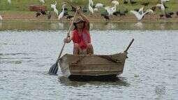 No Dia Mundial da Água, veja como o nível do Lago de Furnas preocupa no Sul de MG