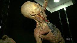 Exposição inédita em Foz do Iguaçu mostra como é um corpo humano por dentro
