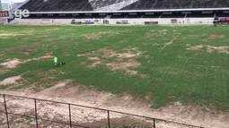 Gramado do estádio Lacerdão apresenta melhora; veja imagens