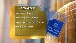 Penápolis oferece oportunidades de emprego