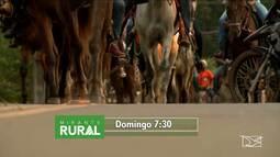 Confira os destaques do Mirante Rural deste domingo (22)