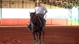Veja atividades esportivas praticadas com cavalos