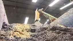 Empresário do setor de reciclagem investe em lixo de pequenas fábricas