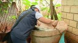 Cai o número de casos de dengue no Gama