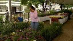 Feira de flores é realizada em Caratinga