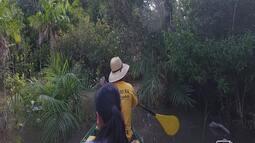 Igarapés são encantos de Alter do Chão na época de enchente