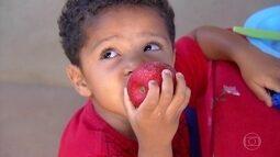 Palmas: capital mais jovem do Brasil é também a mais saudável