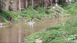 Advogado faz canoagem no Rio Ipojuca