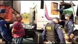 Polícia apreende mais de 1,5 tonelada de maconha em BH e Região