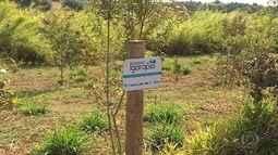 Projeto quer recuperar e preservar nascentes em Igarapé, na Grande BH